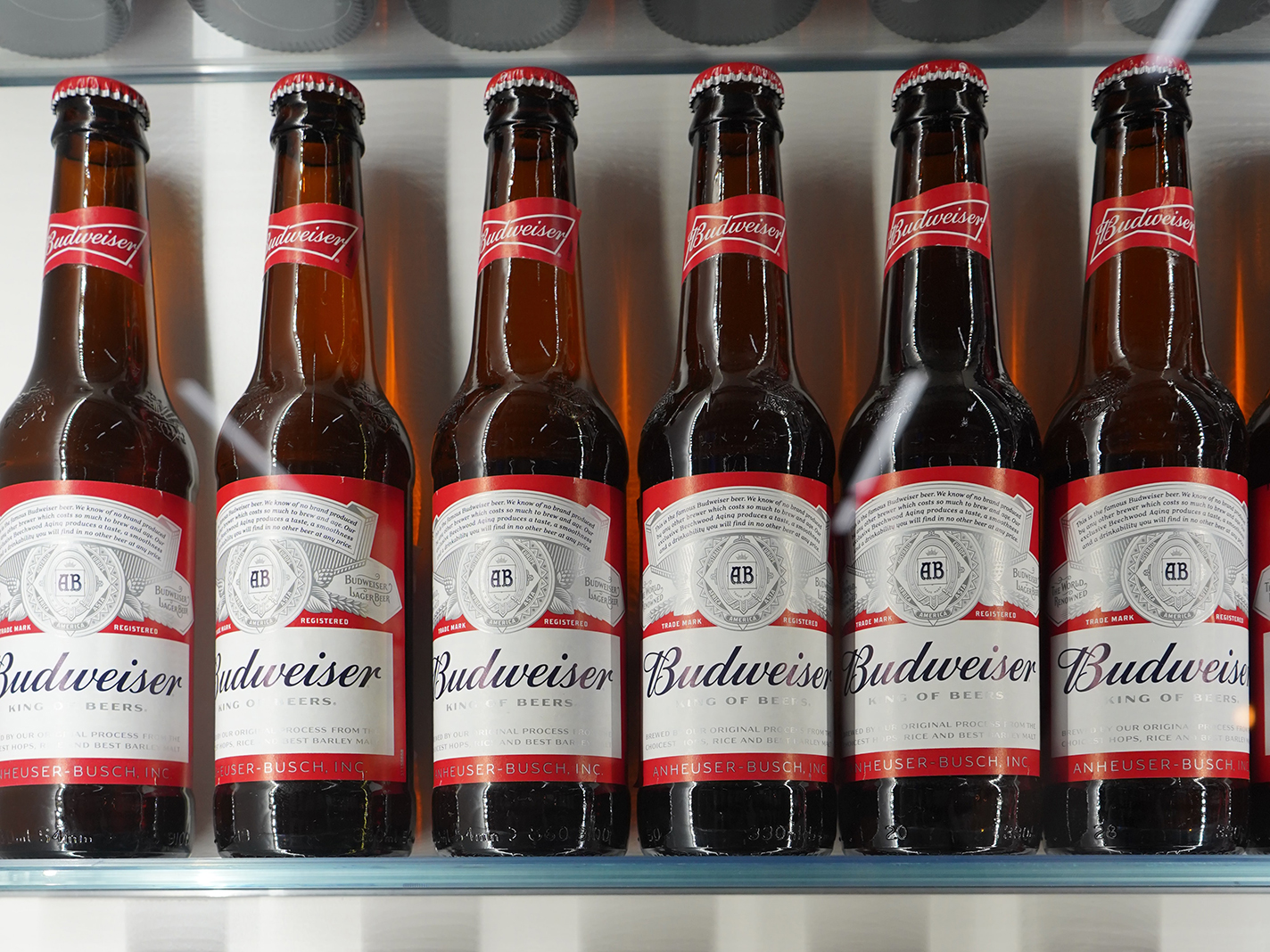 Two shelves neatly lined with glass bottles of Budweiser/ Photo by Liv Hema on Unsplash